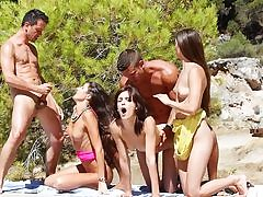Watch college lovemaking soiree by the sea